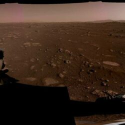 How did the seven-minute panic provoke perseverance? NASA has released a video of a landing on Mars